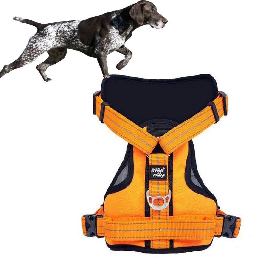 comfortable bike ezydog chest padded dog comforter harnesses harness