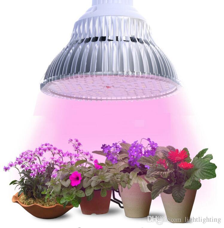 Lamp Flowering Bulb Hydroponic 90w Light Indoor 6w 24w Led Plants Plant 18w 10w 48w Grow For E27 TFJ1cl3K