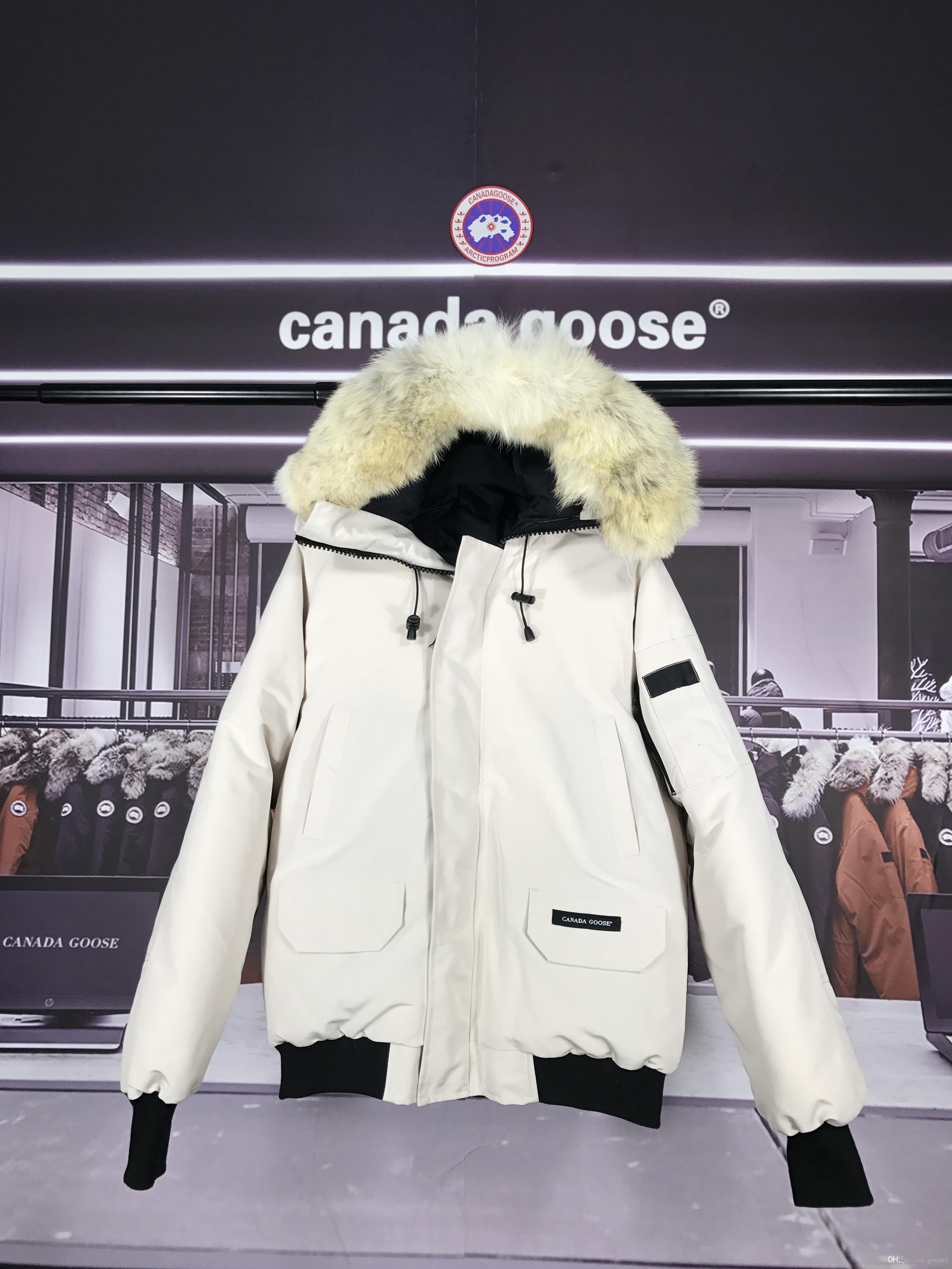 canada goose 2018 GRIGIO