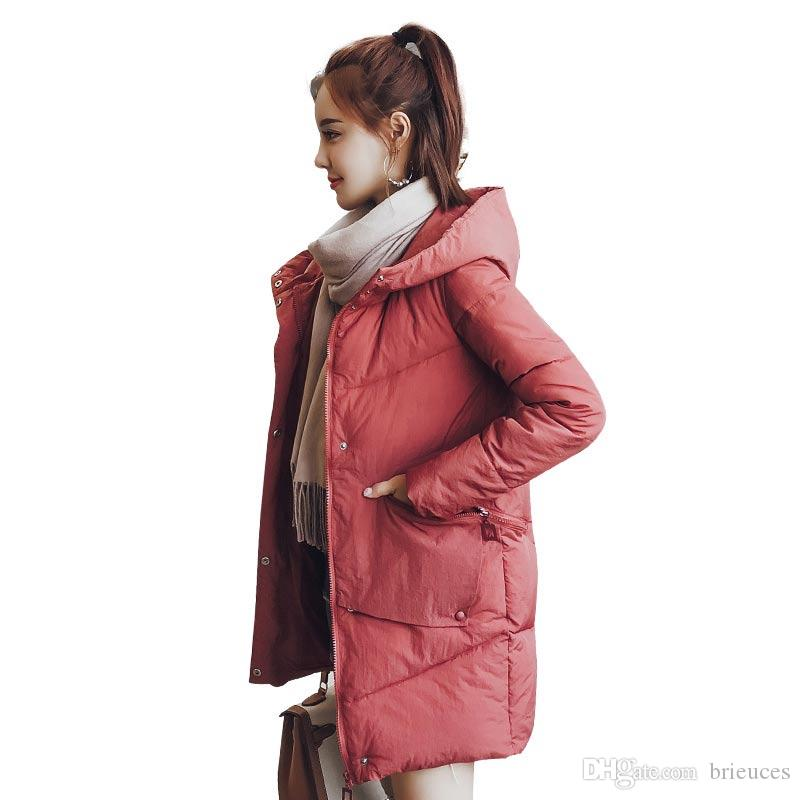 bbc657a9bc18 Brieuces 2018 Wadded Jacket Winter Female New Jacket Women Down ...