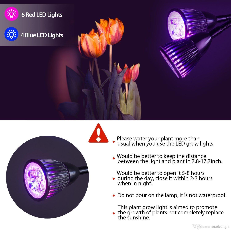10 Watt Dual HeadLed Wachsen Licht Flexible Hals 360 Grad Led Clip Schreibtisch Pflanze Lichter für Hydroponischen Garten Gewächshaus