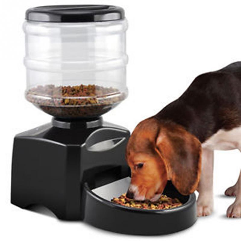 best automatic pet feeder programmable timer food station dispenser
