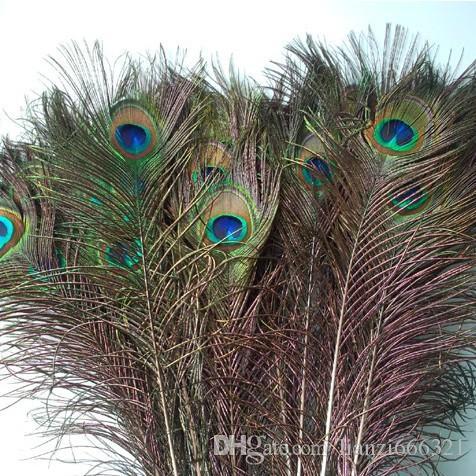 Matériaux décoratifs élégants Plume de paon naturel véritable Belles plumes environ 25 à 30 cm livraison gratuite HJ170