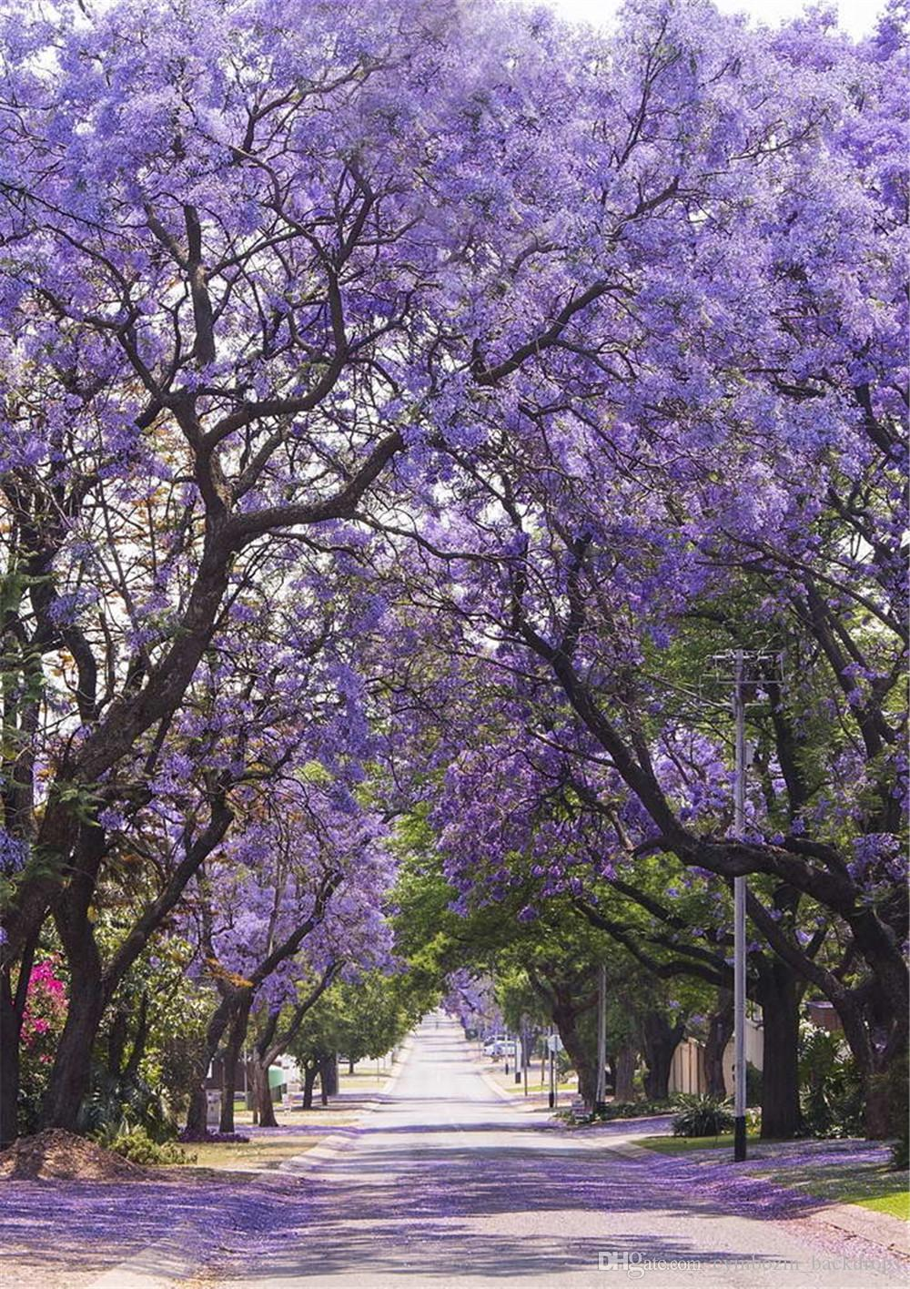 Purple Flower Trees Garden Path Photography Backdrop Printed Spring