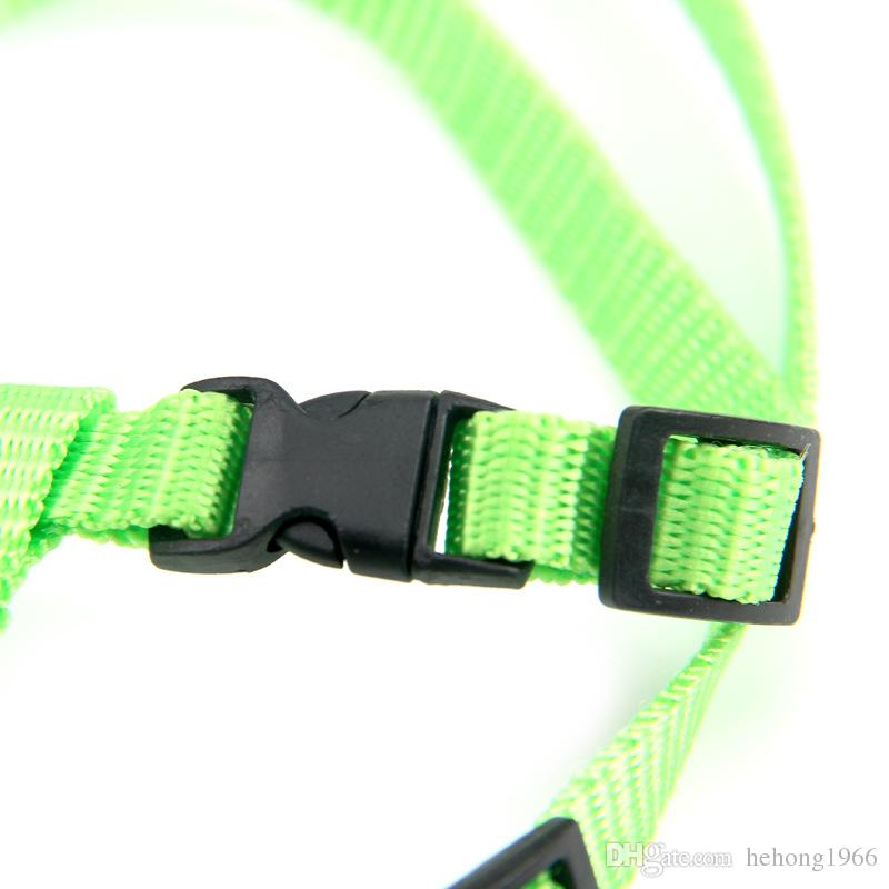 Solid Color Breakaway Slim Kitten Leads Sturdy Nylon Durable Pets Collars For Outdoor Walk The Cat Use Leashes 2 45zj Z