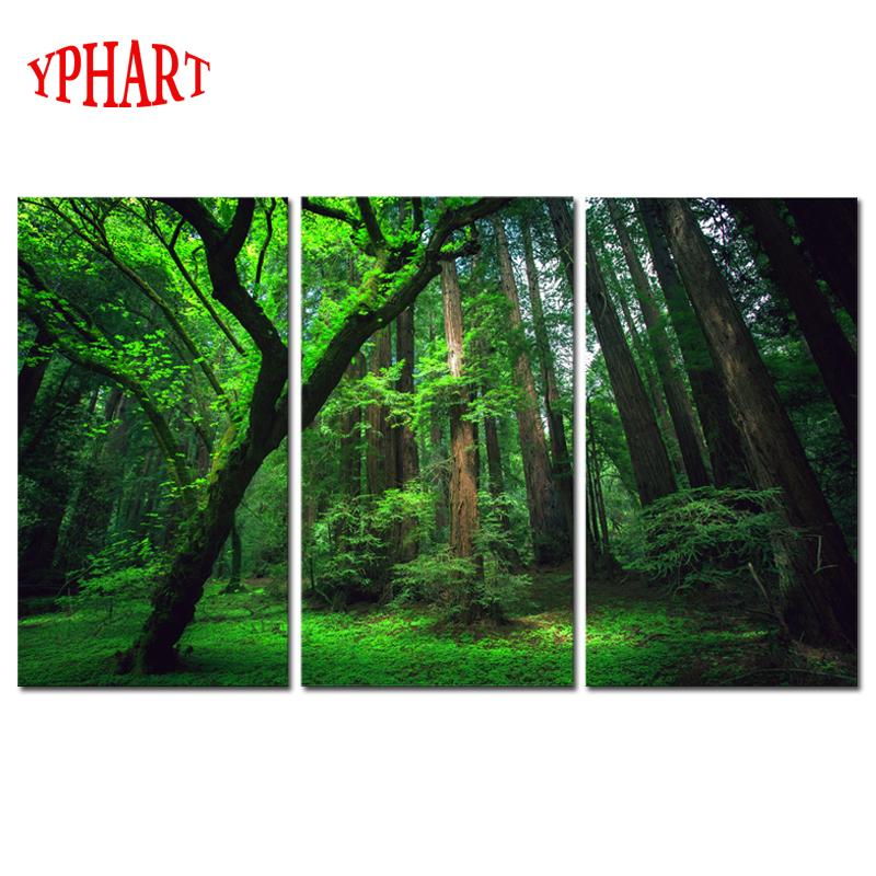 Acheter 3 Panneaux Vert Forêt Hd Toile Impression Peinture Oeuvre