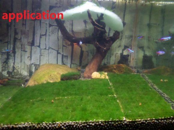 Yosun Canlı bitkiler için paslanmaz çelik örgü Su Akvaryum Fish tank Birçok boyutları KÜÇÜK HIÇBIR MOSS