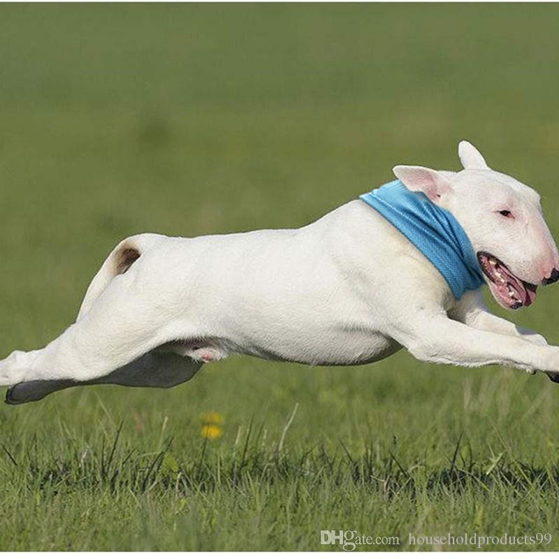 Bule S M L Instant Cooling Pet Bandana Dog Scarf Bulldog Summer Cooling Towel Wrap Breathable Pet Towel Supplies