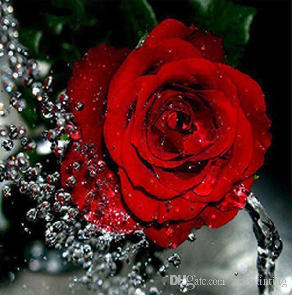 Diamond embroidery flower red rose diy diamond painting cross stitch kit resin full round diamond mosaic home decoration yx4110