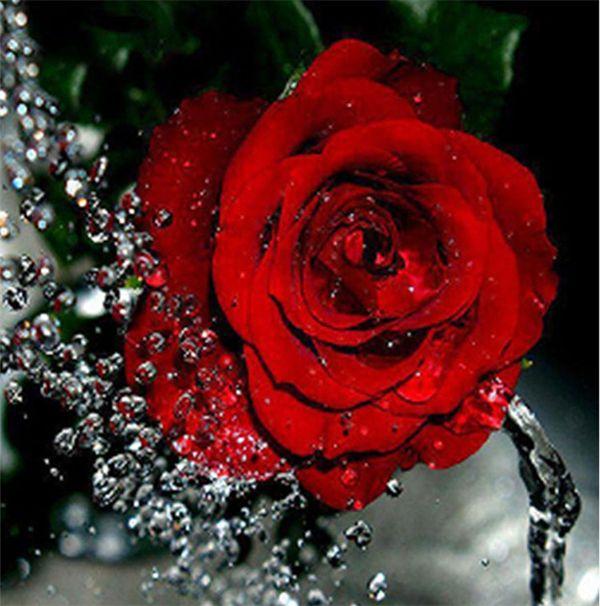 Flor del bordado de diamantes rosa roja pintura diamante bricolaje kit de punto de cruz resina redonda completa mosaico de diamantes decoración del hogar yx4110