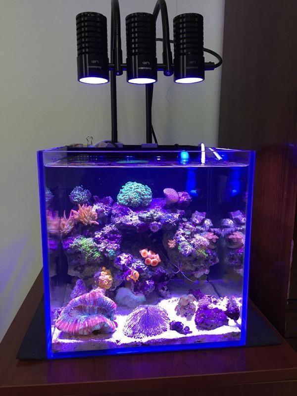 Coral Reef Fish Tank Waterproof Led Aquarium Lights Diving
