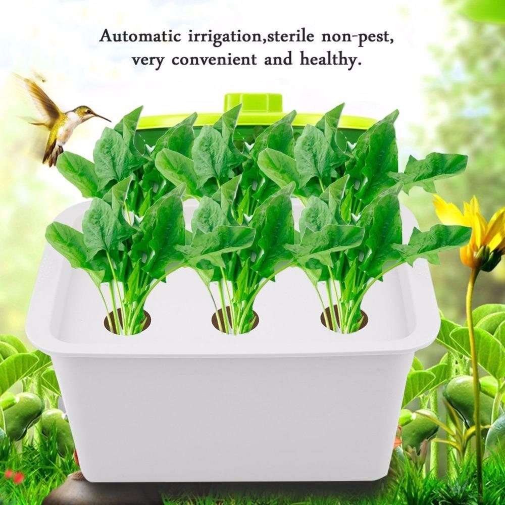 2019 6 Holes 110v Plant Site Hydroponic System Indoor Garden Cabinet