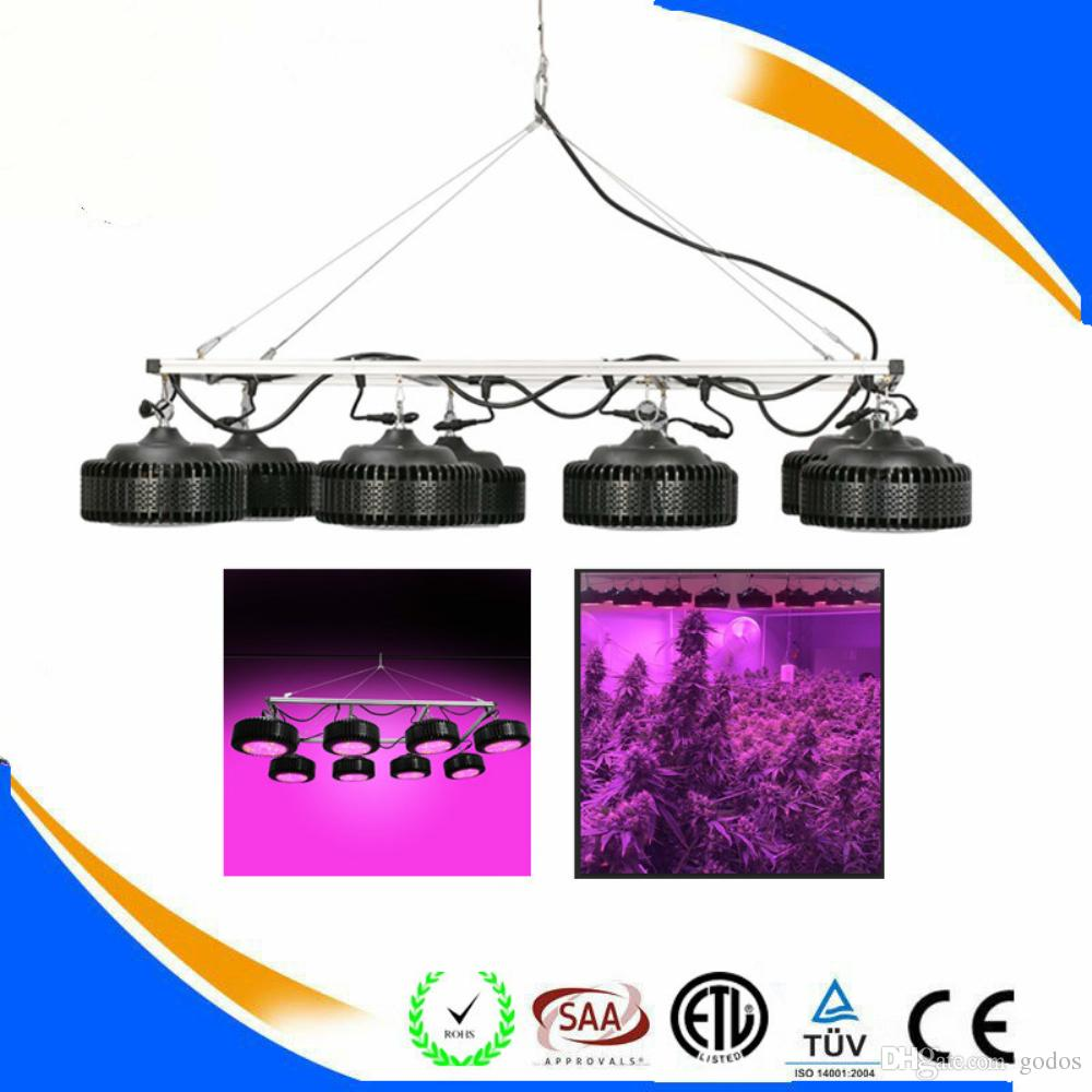 High Power Plants Lamp 1200w Led Grow Light Plant Grow Illumination ...