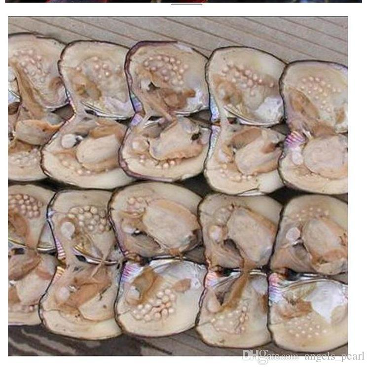 Big Oyster Pearl Five years aquaculture 20-pearls 2018 Wholesale Individually Vacuum Packed Cultured Fresh Oyster Pearl Farm Supply