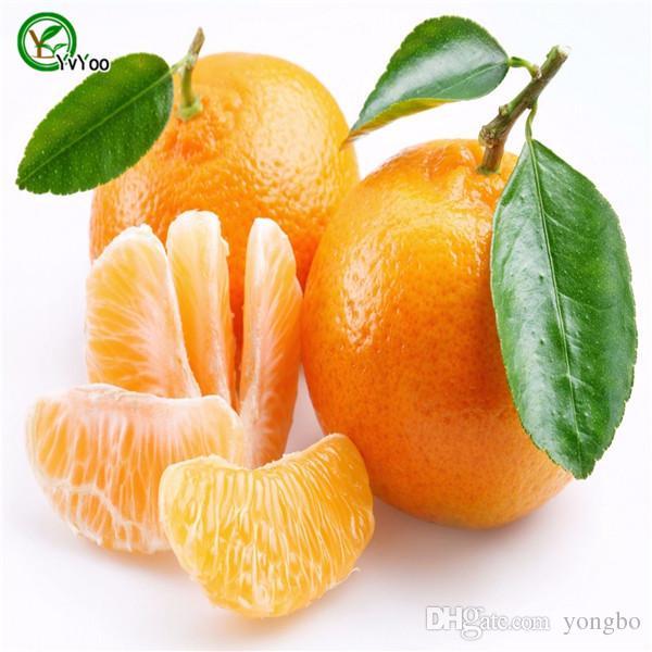 Sementes de laranja escalada orange tree bonsai sementes de frutas Orgânicas Como um pote de árvore de Natal para casa jardim planta 30 pçs / saco A03