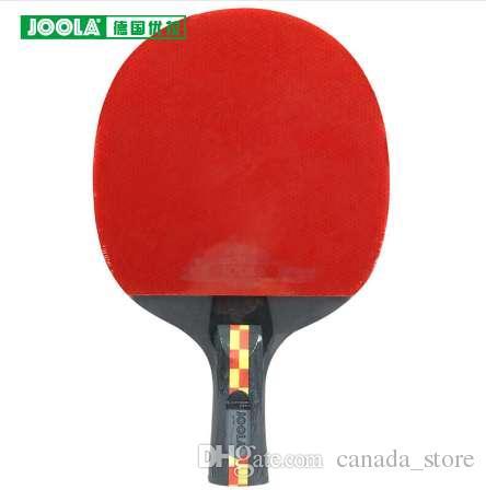 2019 100 Original Joola Carbon Fiber Aruna Quadri Table Tennis