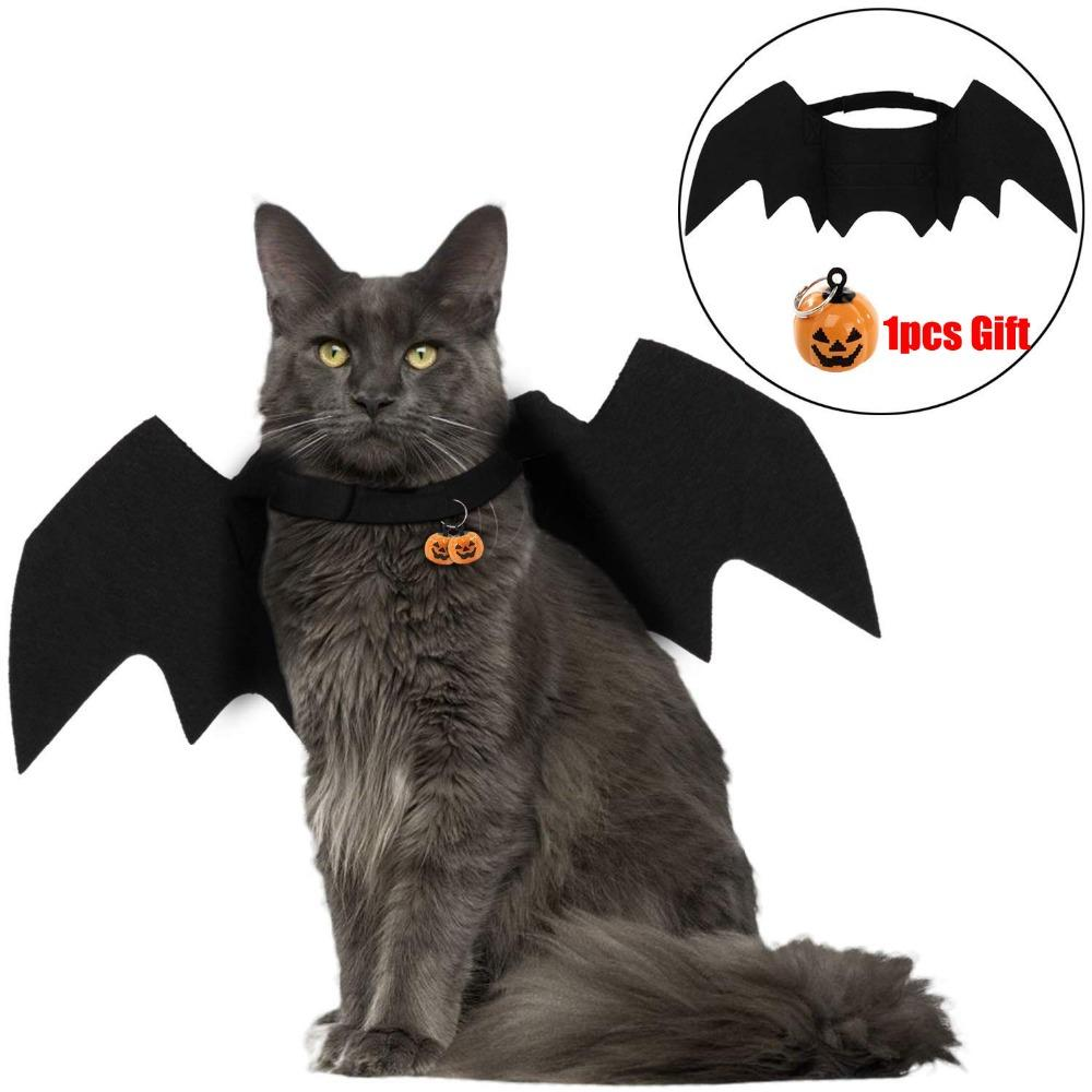 Grosshandel Halloween Katze Fledermausflugel Kragen Harness Decor