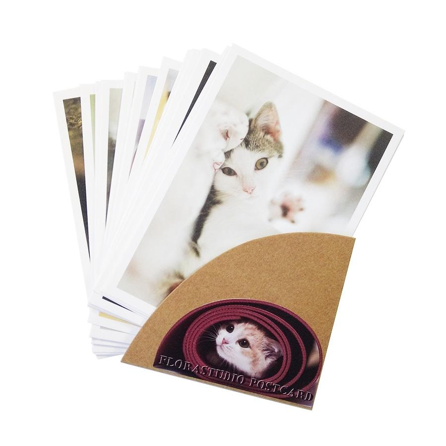 New Cute Cartoon Cat Series Of Postcards Group Greeting Card Gift Cards Zakka Office Stationery Retail Printable Romantic Birthday From