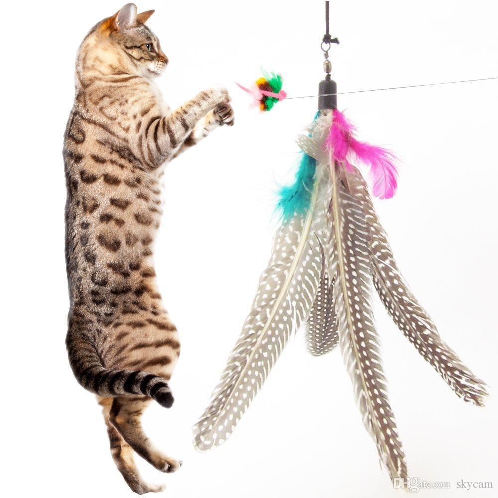Colorido diseño de pluma Tease Cat Stick Cat Catcher Teaser Juguete Tres ejercicios de escala corta Ejercitador para gato y Kitte Color surtidos A222