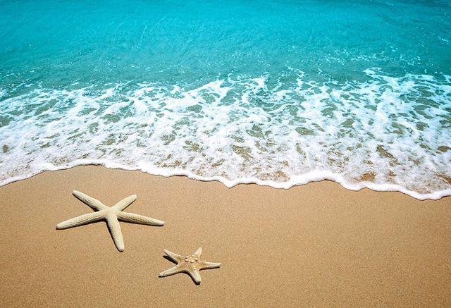 Acquista 7x5ft Estate Mare Onda Stella Marina Spiaggia Di Sabbia