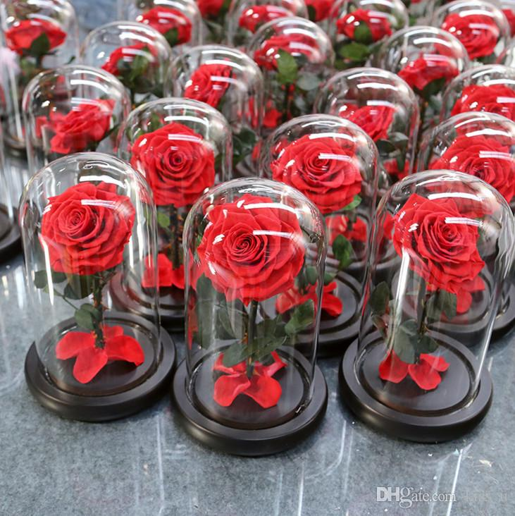 The Little Prince Glass Cover Preserved Rose Flower Immortal Red