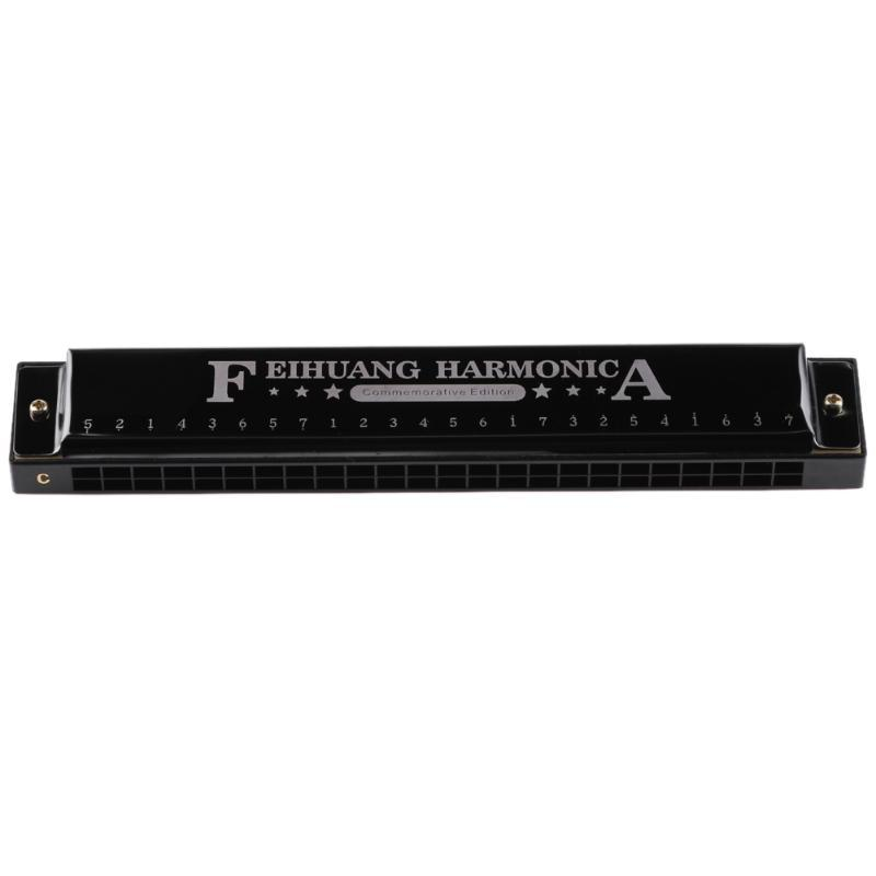 Tremolo Harmonica 24 Hole Key of C Jazz Rock Folk Musical Instrument Metal Octave-tuned Mouth Organ with Case