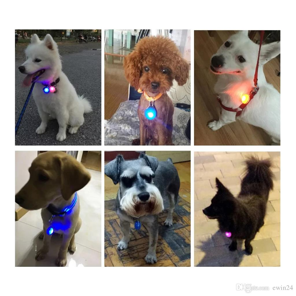 Hund LED Glow Collar Light Anhänger Pet Night Out Sicherheitsleuchten für Hunde Anti-Lost 3 Blinkmodus