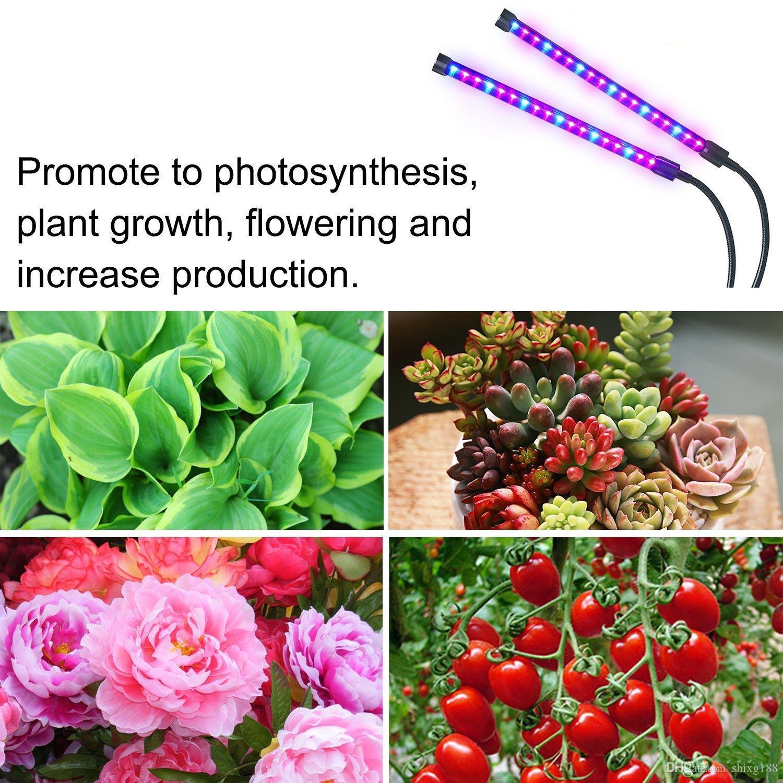 Son model zamanlanmış bitki büyümek ışık USB şarj LED bitki ışık klip lambası