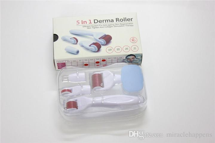 5 en 1 Titanium Derma Roller Kit Microneedle Terapia Masajeador Piel apriete Cuidados Rejuvenecimiento Spots Portátil Uso en el hogar