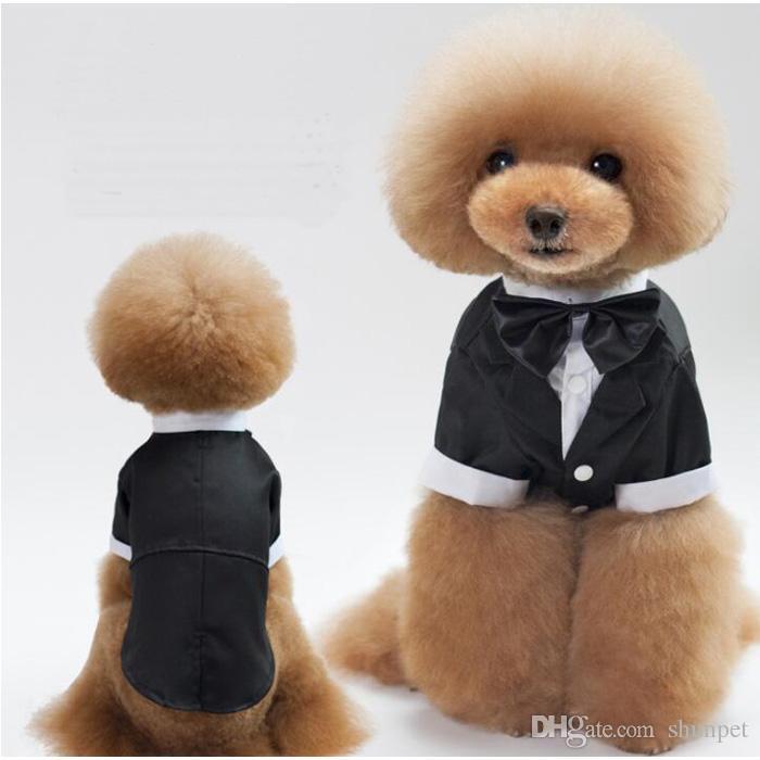 Puppy Wedding Dress for Boys