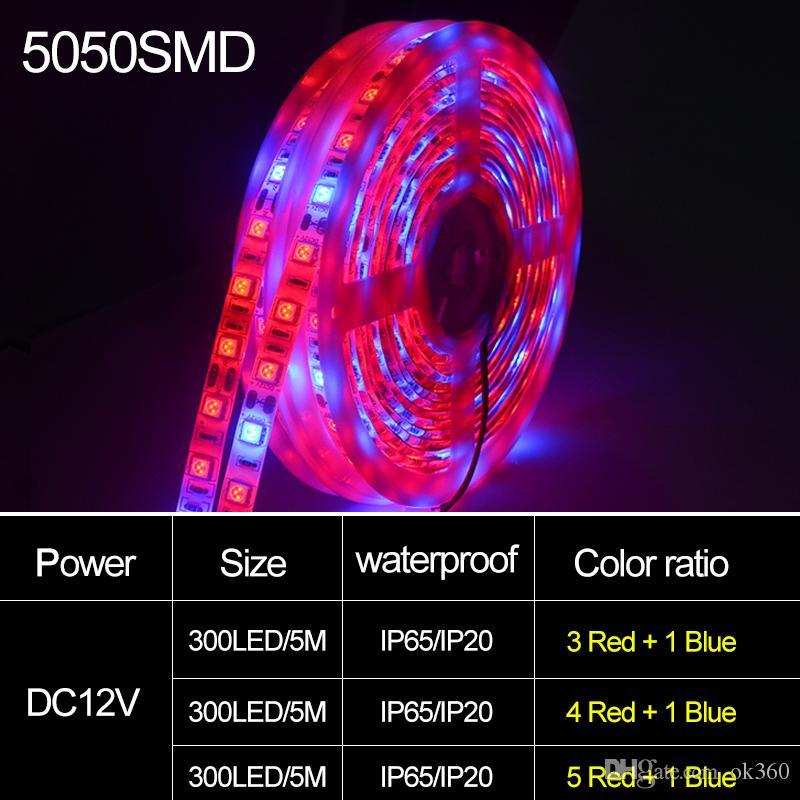 DC 12V LED Grow light Spettro completo 5 M LED Strip light Full Spectrum Grow Lights Lampade di crescita delle piante la serra Idroponica Crescita delle piante