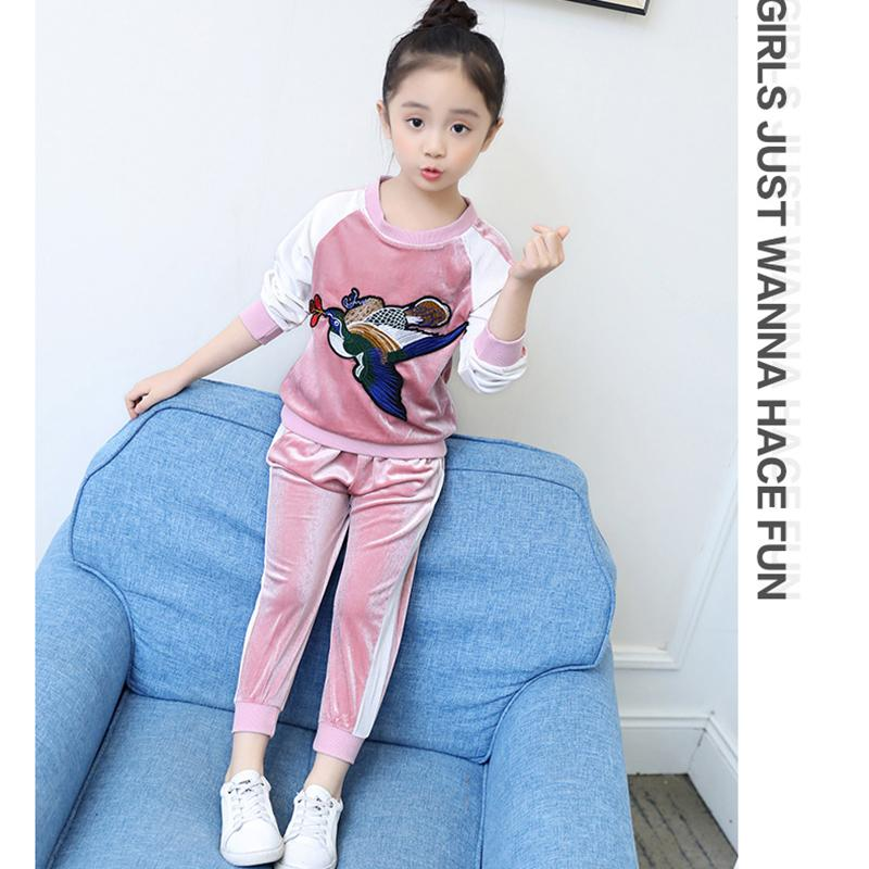 97431b22c3afb Acheter Vêtements Pour Enfants Ensemble Tenues Sport Suit Broderie Bébé  Fille Hoodies Velours D'or + Pantalon De Sport Deux Pièces Set Top Et  Pantalon De ...