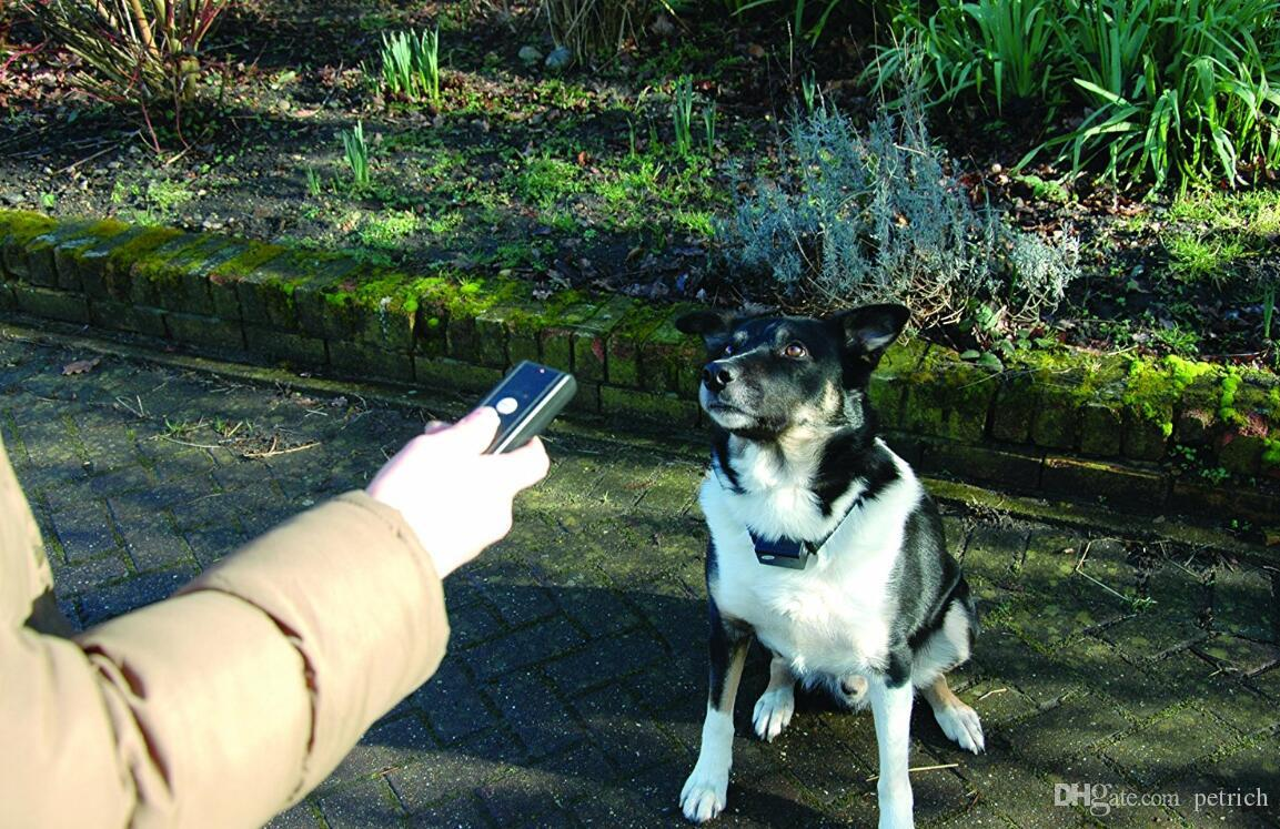 Remote dog trainer with vibration and sound.1000 ft remote range and rechargeable