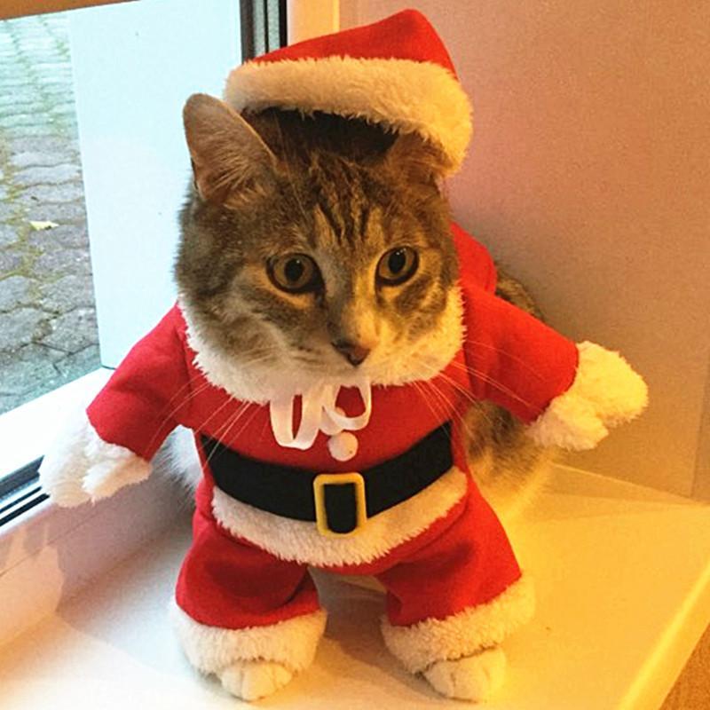 f6567eaf5aad9 Acheter Chat De Noël Vêtements Costume Vêtements Pour Chats Nouvel An Chiot  Tenue Pet Chat Pour Chihuahua Hiver Chaud Pet 20 S1 De  40.81 Du Carmlin ...