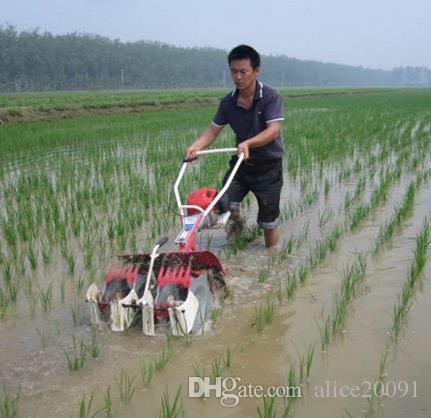 riso 2018 di vendita calda di tecnica agricola 2rows weeder mini macchina weeder macchina campo di riso paddy diserbo macchina diserbo