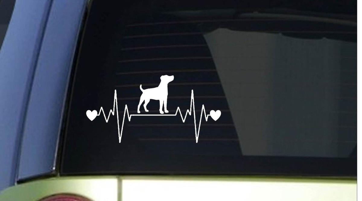 2019 Car Styling For Jack Russell Terrier Heartbeat Lifeline 8 Wide