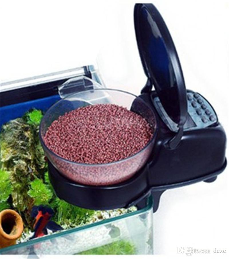 automatic fish tank feeder