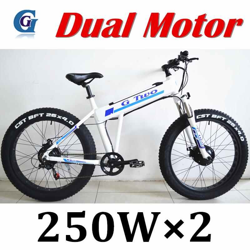 Dual Motor Big Powerful Electric Bicycle, 250W / Motor, 26 Inches ...
