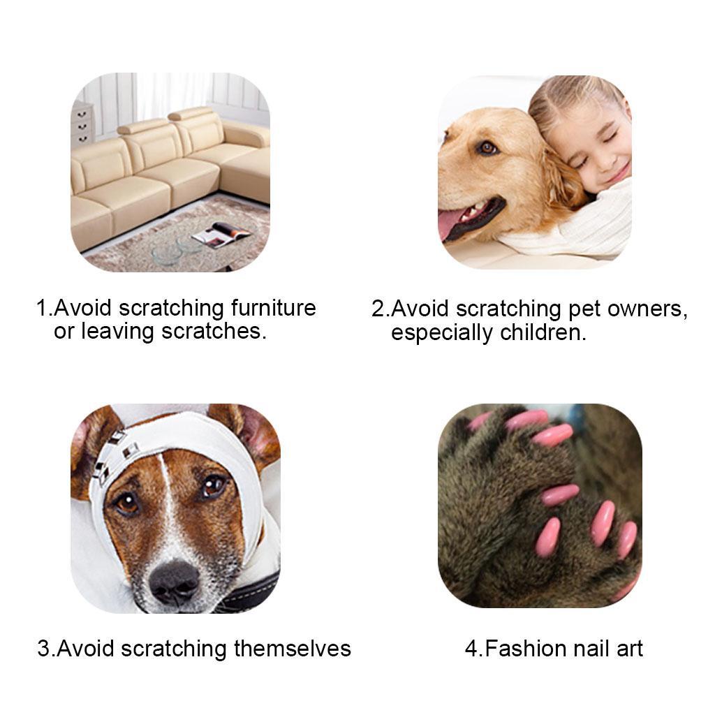 Weiche Nagel-Kappen-Nagel-Abdeckungen Klaue-Kappen-Pfoten-Abdeckungen für Katzen-Haustier-Kätzchen mit den Kleber-Klauen-Steuerpfoten weg
