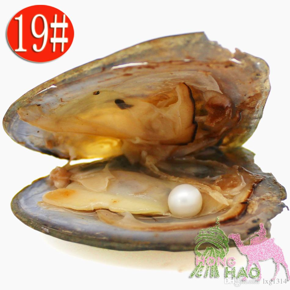 Wholesale AAAA6-7mm vacuum packed freshwater pearl oyster, pearl color is 19# natural whiteby DHL