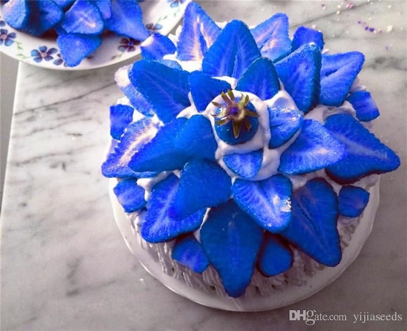 Sıcak 50 ADET Nadir Mavi Çilek Tohumları Meyve ve Sebze Balkon Saksı Çilek Fragaria Ananassa Tohumları
