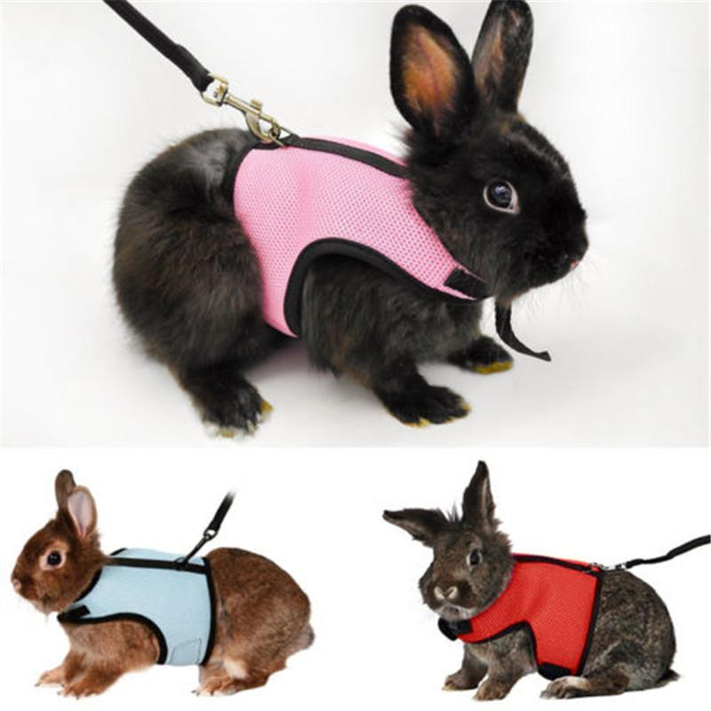 2018 pet leash and harness for small animals hamster rabbit rat 2018 pet leash and harness for small animals hamster rabbit rat guinea pig ferret harness vest soft mesh walking cat traction rope from shutie publicscrutiny Image collections
