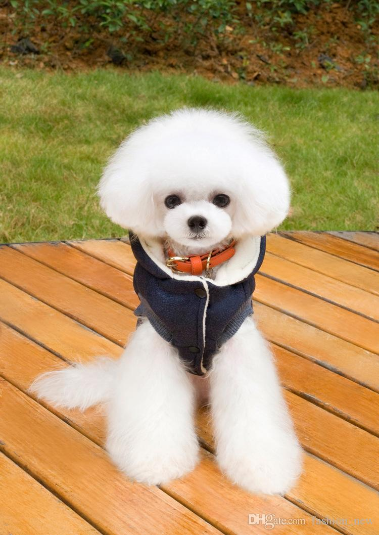 Newest Mustache Hooded Style Pet Dog Thick Winter Coat Clothes From S to XXL By China Post Dog Coat Dogs Clothes