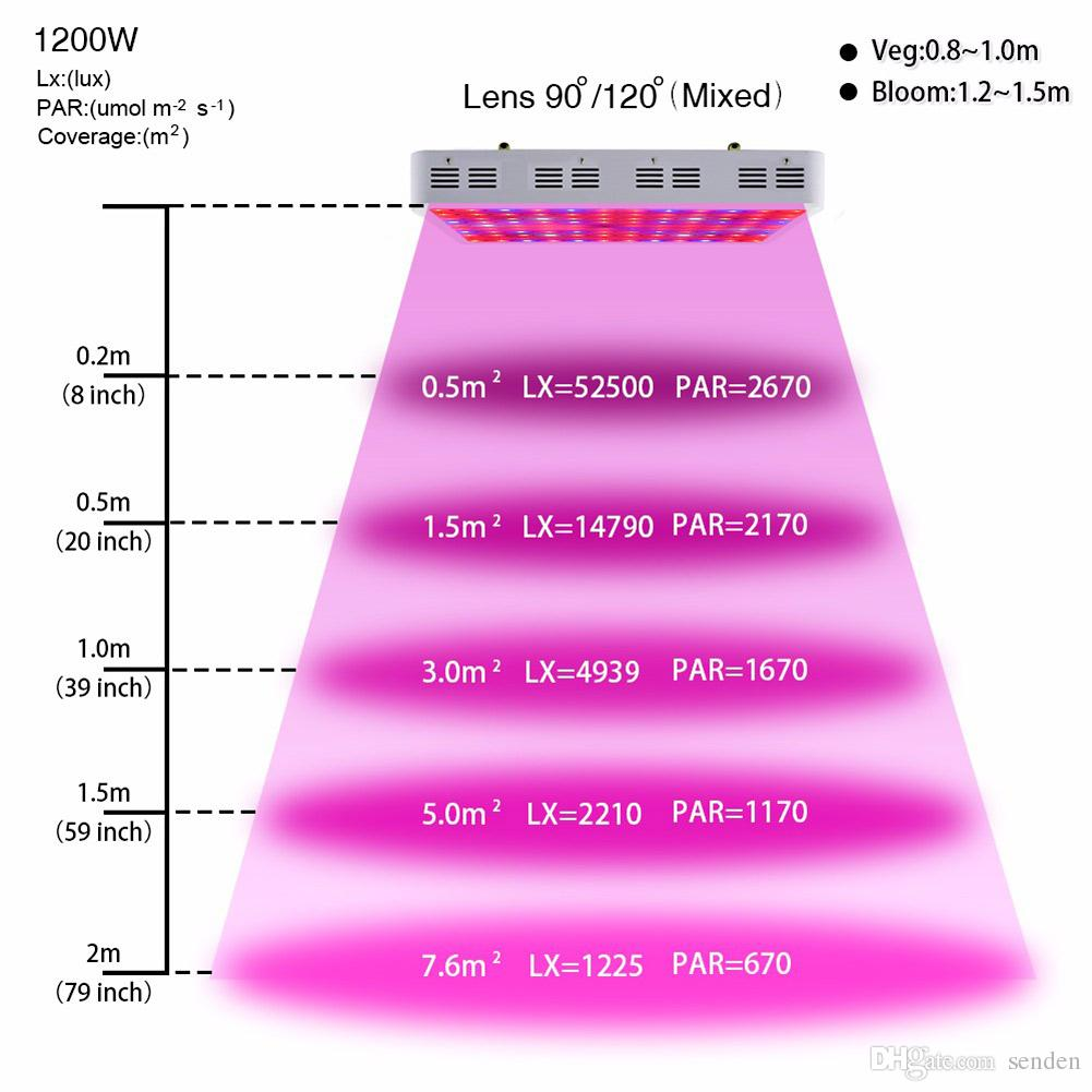 Hot Full Spectrum 1000w 1200W LED Grow Light Double Chip Led Plant Lamp Indoor greenhouse growing garden flowering hydroponic UV IR lights