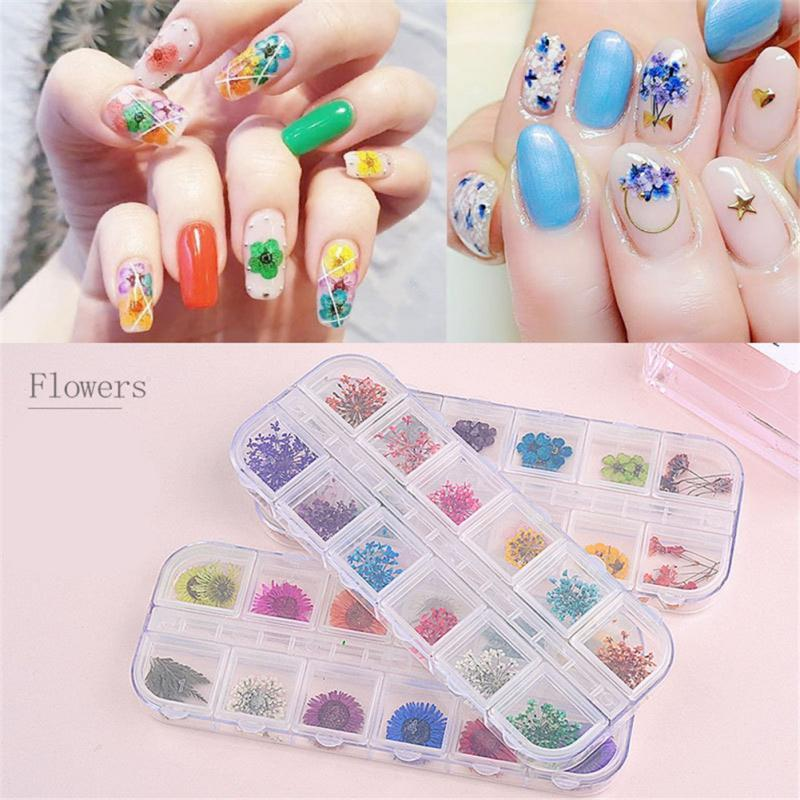 Nail Natural Dry Flower Decor Manicure Sunflower Nail Art
