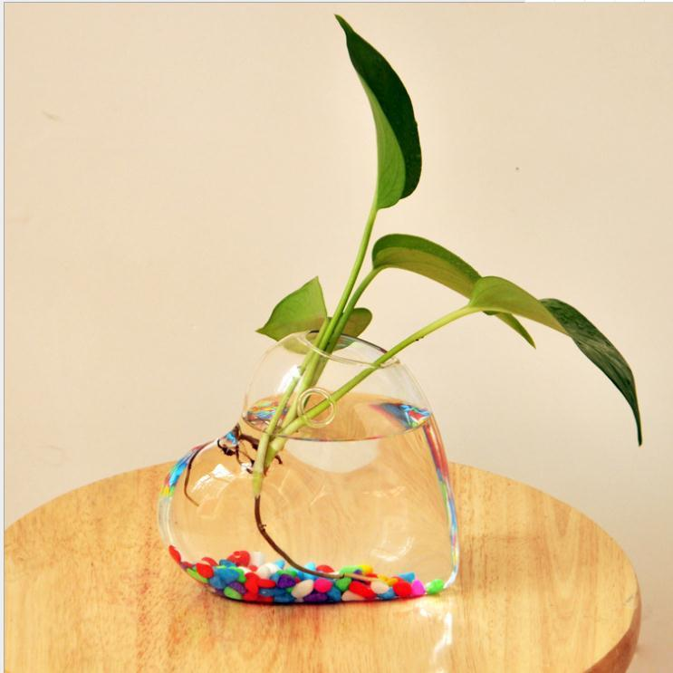 Heart Shaped Hanging Glass Vase Hanging Vase Wall Hanging Plant ...