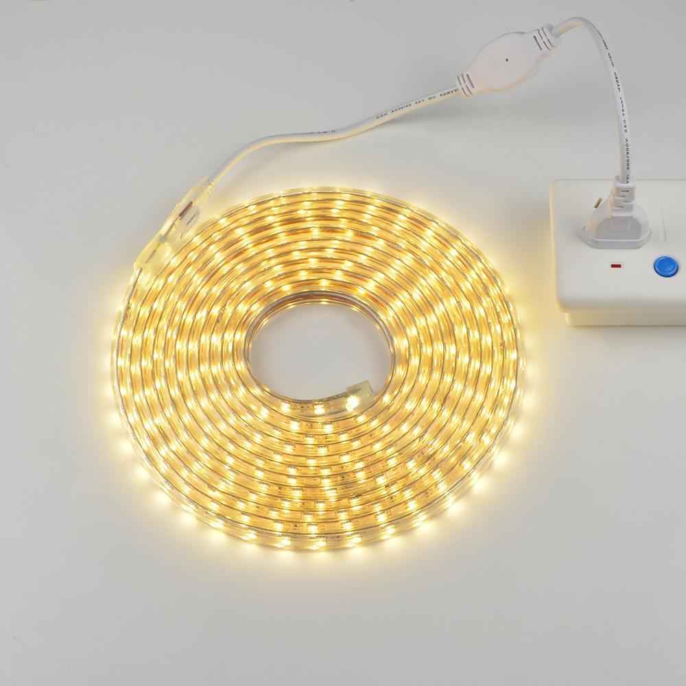 1M 2M 5M 10M 15M Input Voltage AC 220V Flexible 5050 SMD LED Strip light Silicone Tube Waterproof 60LEDs/M With EU Power Plug