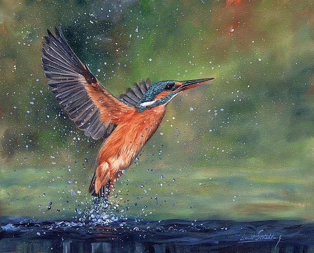 Artwork-kingfisher-Unframed Modern Canvas Wall Art for Home and Office Decoration,Oil Painting ,Animal painatings ,frame.