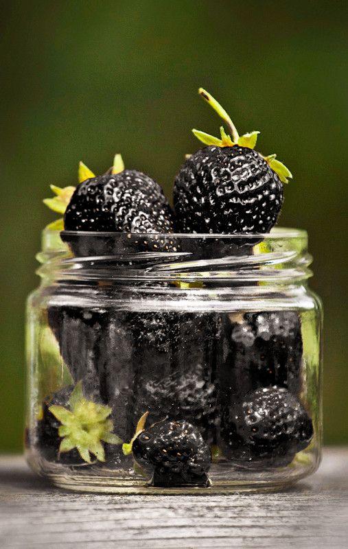 New Seeds 2018!/Bag Fruit Seeds Black Strawberry Seeds Bonsai Plants For Home & Garden Pot Garden Strawberries,#326VKM