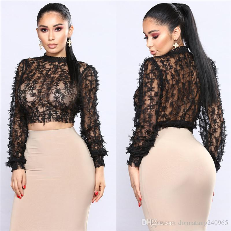 169c2c1ec3c4a Sexy Sheer Lace Crop Top Women Embroidery Lace Tops High Neck Long Sleeve  Ladies Blouse Mesh Shirt Clubwear Blusas Black White Shopping T Shirt  Online Cool ...